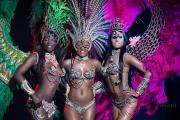 Бразильское шоу недорого в Москве