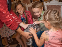 Фокусник на детский праздник недорого в Москве