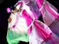 Китайский танец с веерами недорого на праздник в Москве