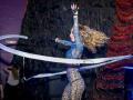 Шоу воздушных гимнастов недорого в Москве