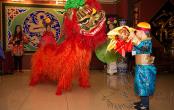 Шоу на китайский новый год в Москве
