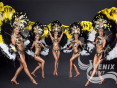 Бразильское шоу на праздник, свадьбу, корпоратив Москва