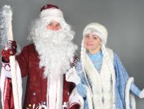 Дед Мороз и Снегурочка пригласить на дом