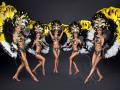 Танцевальный коллектив с номерами Бразильский карнавал