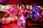 Заказать лучшее шоу зеркальных иллюзий на День Рождения в Москве