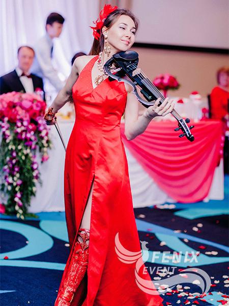 Скрипка на встречу гостей Москва