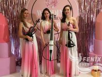 Лучшие музыканты на свадьбу, праздник, корпоратив Москва