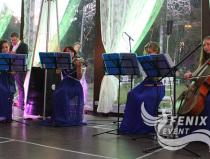 Заказать скрипичное шоу Москва