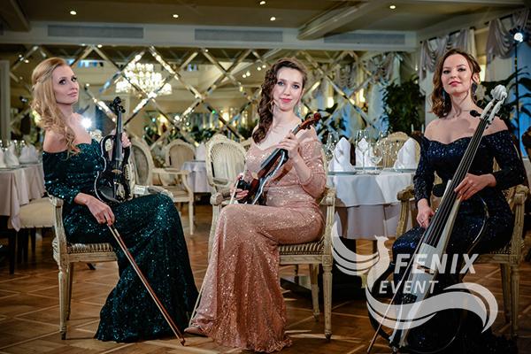 Заказать струнный коллектив на праздник,свадьбу,корпоратив Москва