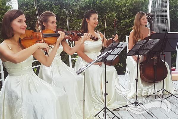 Струнный коллектив на свадьбу, корпоратив Москва