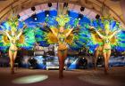 Танцевальное шоу в Москве с латиноамериканскими танцами