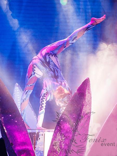 цирковое акробатическое шоу девушка в Зеркальном цветке