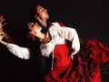 Испанское шоу фламенко на праздник в Москве