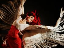 Испанское шоу фламенко Москва