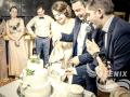 Заказать ведущего на свадьбу Москва