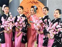 Заказать Японский танец Сакуры Москва