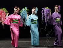 Японское шоу Москва