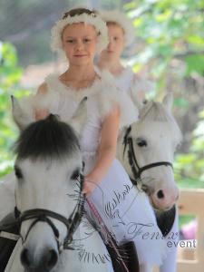 Выступление цирковых животных на детском празднике